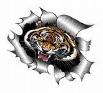 Ripped Torn Metal Design With Roaring Bengal Tiger Motif External Vinyl Car Sticker 105x130mm
